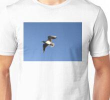 Little Gull In Flight Unisex T-Shirt