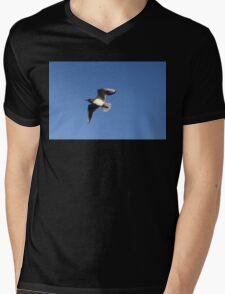 Little Gull In Flight Mens V-Neck T-Shirt