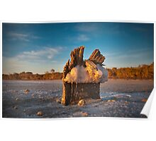 Pink Lake Salt Crystals Poster