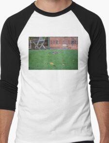 Jay On The Lawn Men's Baseball ¾ T-Shirt