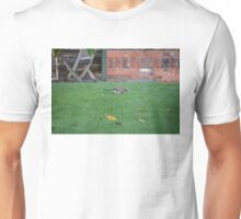 Jay On The Lawn Unisex T-Shirt