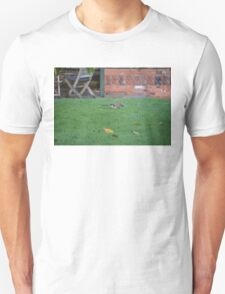 Jay On The Lawn T-Shirt