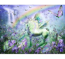 Unicorn Of The Butterflies Photographic Print