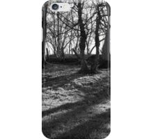 Railway Trees iPhone Case/Skin