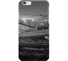 Winter Panorama iPhone Case/Skin