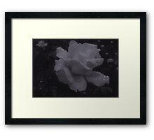 { v i } Framed Print