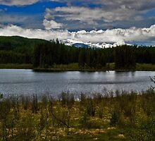 Why I Love Montana, 4 by Bryan D. Spellman