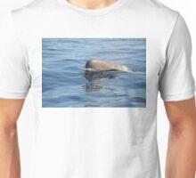 Rare North Atlantic Bottlenose Whale Unisex T-Shirt