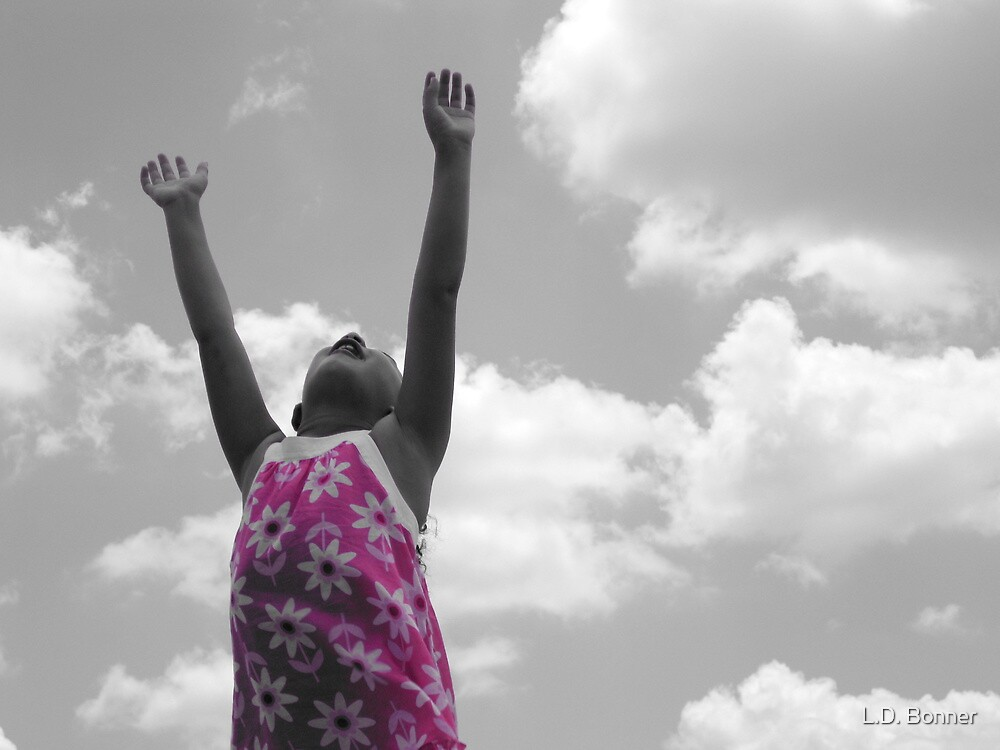 Reach for the Sky by L.D. Bonner
