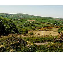Devon Countryside Photographic Print