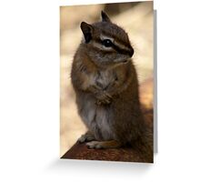 I Promise ... I Didn't Take Your Nut .. Greeting Card