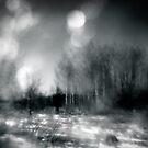the light of day by Dorit Fuhg
