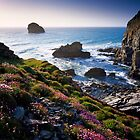 Backways Cove, North Cornwall by Craig Joiner
