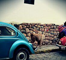 Peru by HeyGlad