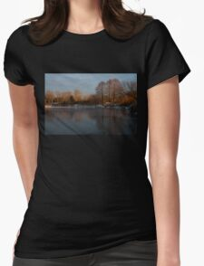 Gray and Amber - an Early Winter Morning on the Lake Shore T-Shirt