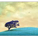 A Bird and A Tree by Mal Bray