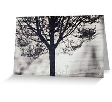 Shadow of Tree on White Brick Wall Greeting Card