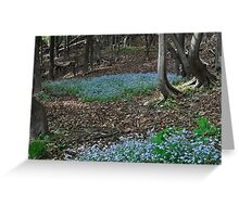 Blue Patch Greeting Card