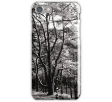 In the forest iPhone Case/Skin