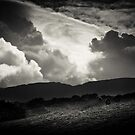 Snowdonia by Dorit Fuhg