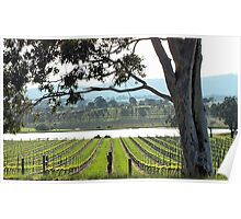 St Huberts Winery Poster