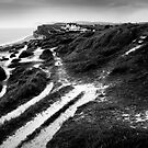 coastal path (landscape format) by Dorit Fuhg