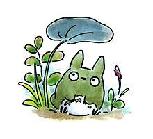 My Neighbour Totoro by LadyTakara