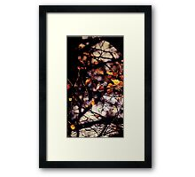 Autumn I Framed Print