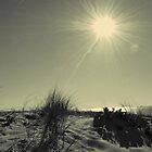 Vieux-Boucau : run to the beach by MitchHippie