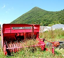 Old Massey Ferguson lost in Spain by MitchHippie