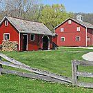 Barns of Hale Village by Monnie Ryan