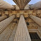 Looking Up by balexander101