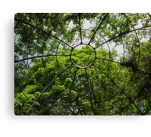 Canopy of Green Canvas Print