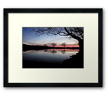 Willow Tree Twilight Framed Print