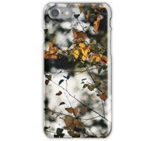 Last days of Autumn iPhone Case/Skin