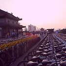 Bikes on the Wall, Sunset by justineb