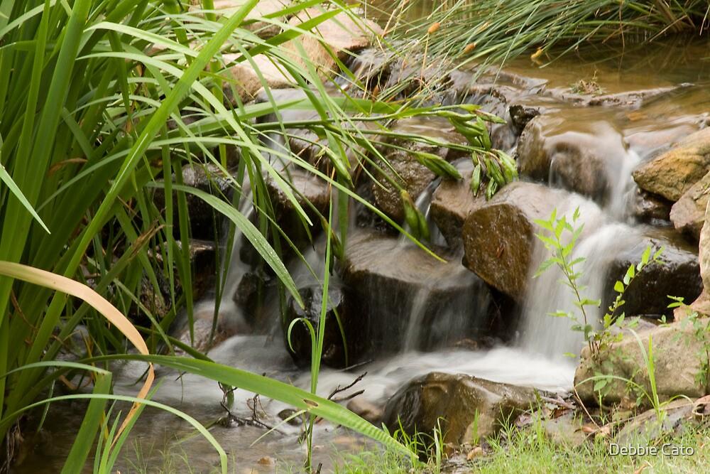 Waterfall by Debbie Moore