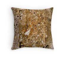 set in stone Throw Pillow