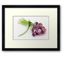 Chives Beauties Framed Print