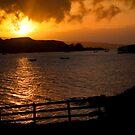 Golden rays over loch Dunvegan by Shaun Whiteman