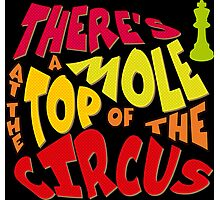 A mole at the top of the circus Photographic Print