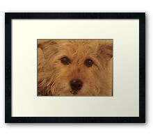 Can I Show You My Best Side? Framed Print