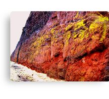 Rockface, Miocene Period, Oregon Canvas Print