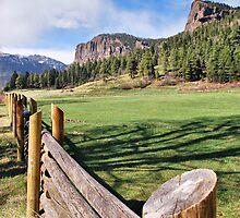 Out Riding Fences by Gregory Ballos | gregoryballosphoto.com