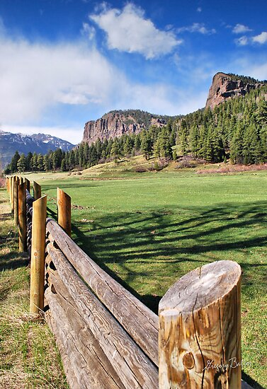 Out Riding Fences by Gregory Ballos | gregoryballosphoto.com
