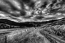 Thunderbolts Way - mono by Jason Ruth