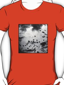 Doomsday (for colour tshirts) T-Shirt