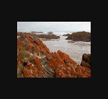 Red Lichen on Rocks, Arthur River, Tasmania, Australia. Unisex T-Shirt
