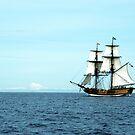HMS Horizon by ReveLinWonder