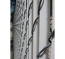 White Fence Photographic Print